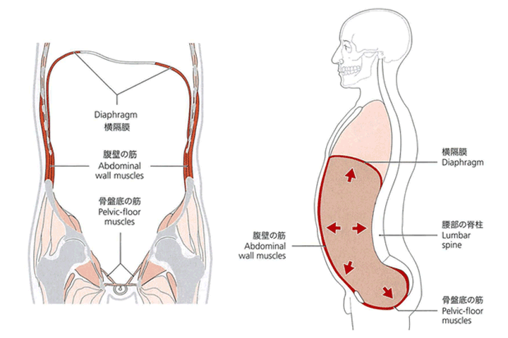 産後の骨盤矯正とインナーユニット