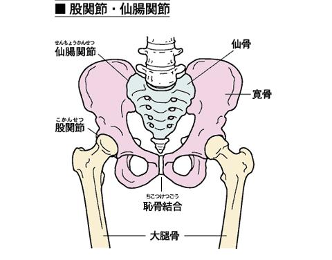 産後の骨盤矯正を正しく理解するために