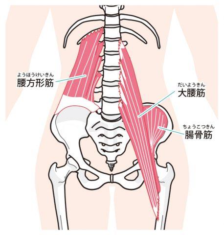 大腰筋イメージ、インナーマッスル