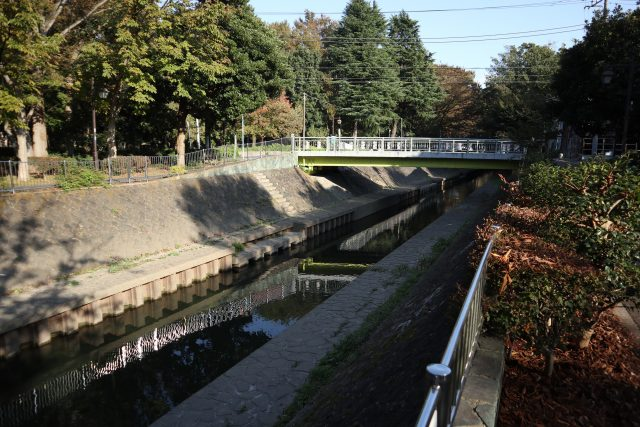 善福寺川流域の緑地帯